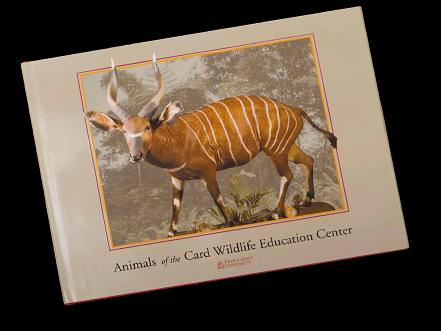 Animals of the Card Wildlife Education Center-Hardcover
